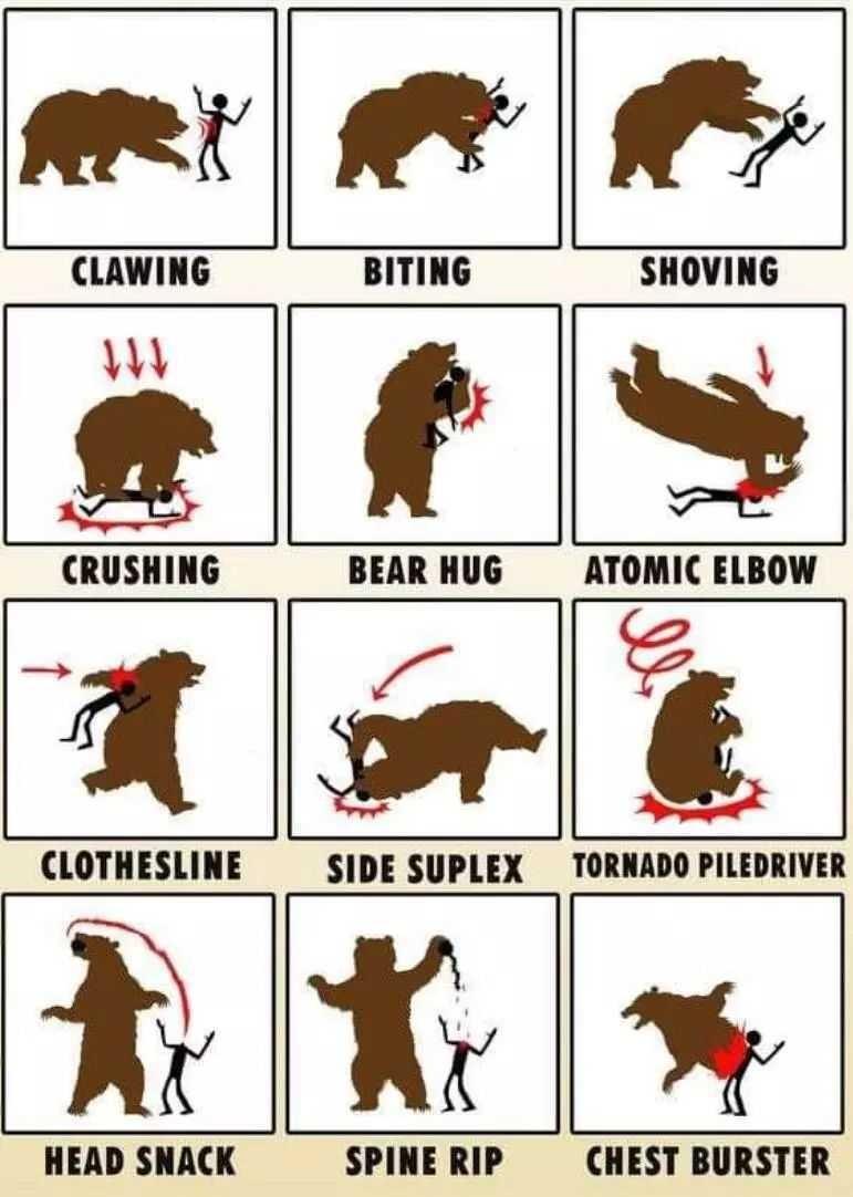 【6upoker】搞笑漫画图片单挑熊反被杀 单挑熊N种死法不作死就不会死