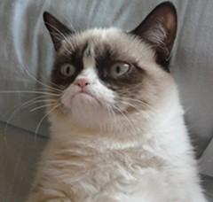 【6upoker】开心一刻:你被爆冷门时的样子简直太搞笑了