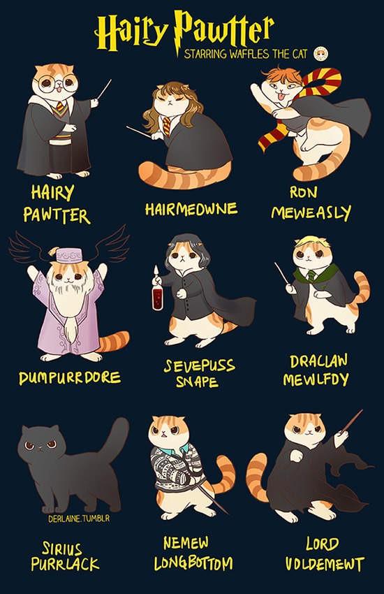 【6upoker】电影与ACG经典角色拟猫化 超级英雄变成喵星人是什么样