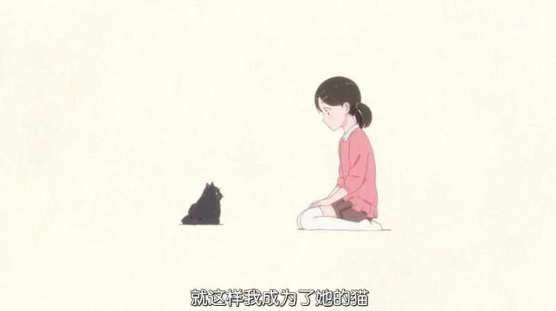 【6upoker】泡面番《她和她的猫》 只有四话却能让你看哭